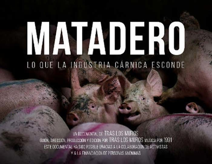 Documental Matadero de Tras los Muros